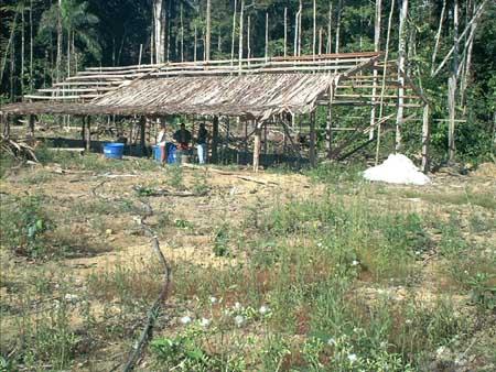 Minhoca-Anlage